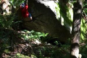 A boulder near Skykomish