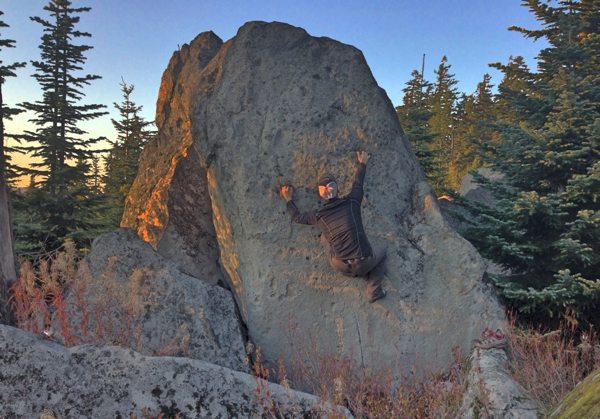 Nice Meadow Boulder