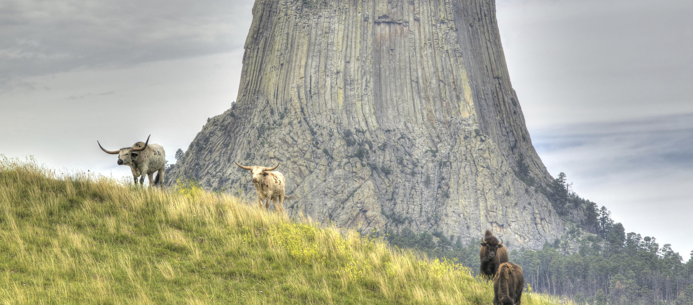 Wyoming Rock Climbing